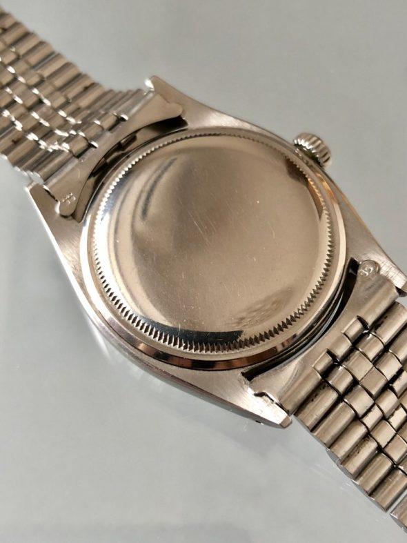 ref.6605 Steel マットホワイト